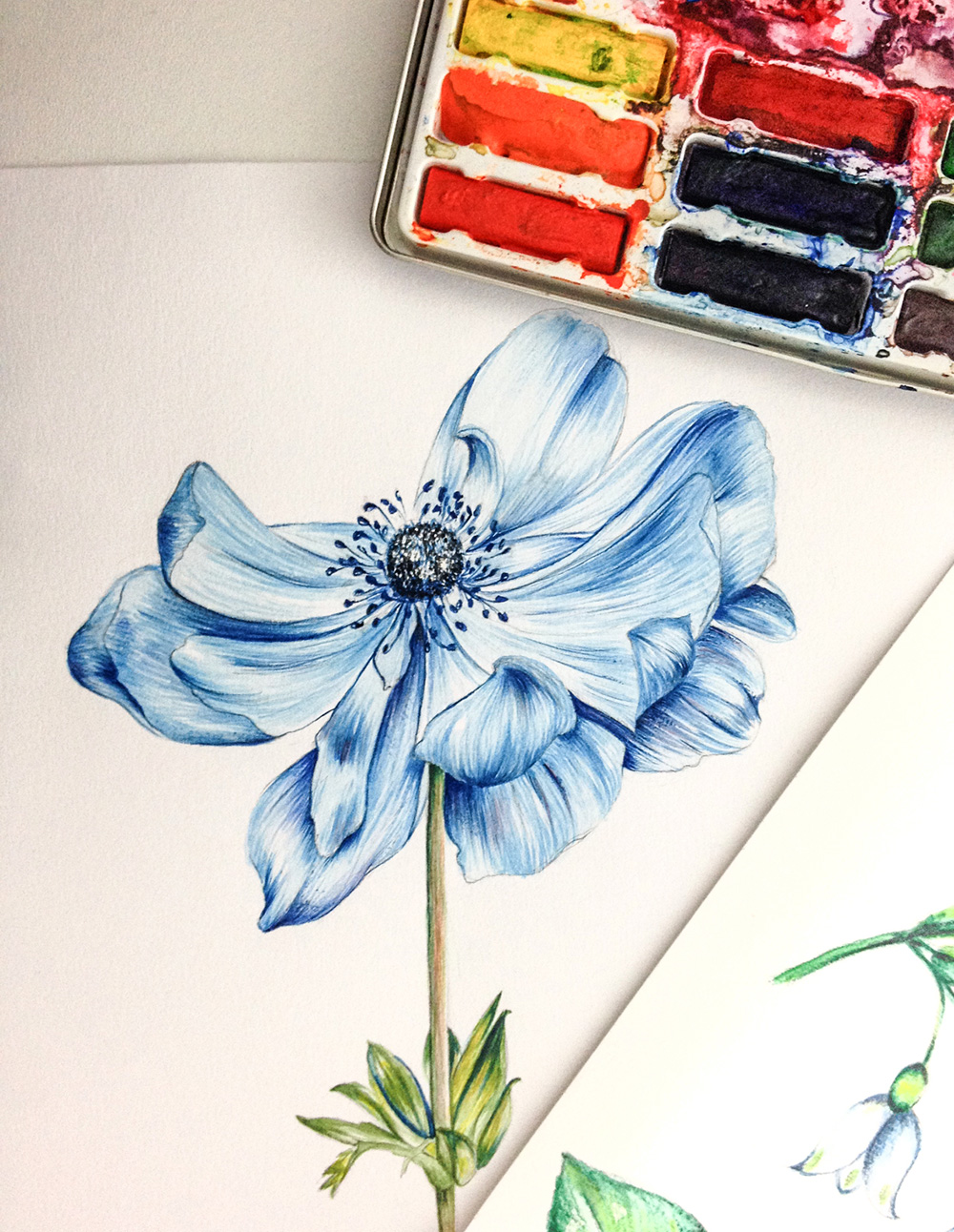 as-encantadoras-ilustracoes-de-ketlin-dafne-elainspira-4